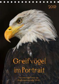 Greifvögel im PortraitAT-Version (Tischkalender 2019 DIN A5 hoch) von Tipka (GUTI-Fotos),  Guido