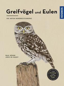 Greifvögel und Eulen von Böhre,  Paul, De Raedt,  Joris