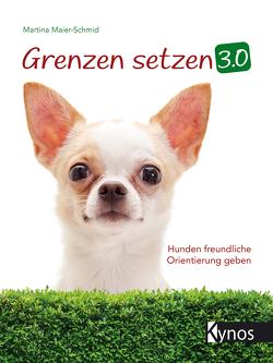 Grenzen setzen 3.0 von Maier-Schmid,  Martina