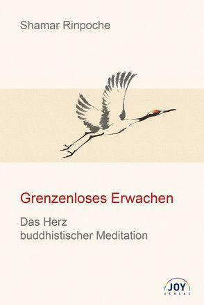 Grenzenloses Erwachen von Rinpoche,  Shamar