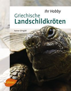 Griechische Landschildkröten von Zirngibl,  Rainer