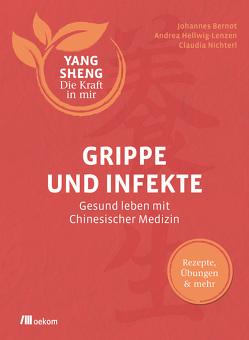Grippe und Infekte (Yang Sheng 4) von Bernot,  Johannes, Hellwig,  Andrea, Nichterl,  Claudia, Schramm,  Helmut, Tetling,  Christiane