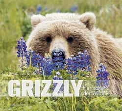 Grizzly von Breiter,  Matthias