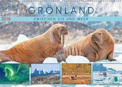 Grönland: Zwischen Eis und Meer (Wandkalender 2019 DIN A2 quer) von CALVENDO