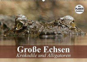 Große Echsen. Krokodile und Alligatoren (Wandkalender 2018 DIN A2 quer) von Stanzer,  Elisabeth