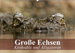 Große Echsen. Krokodile und Alligatoren (Wandkalender 2019 DIN A2 quer) von Stanzer,  Elisabeth
