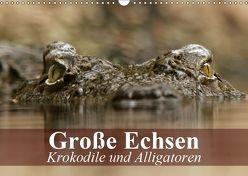 Große Echsen. Krokodile und Alligatoren (Wandkalender 2019 DIN A3 quer) von Stanzer,  Elisabeth