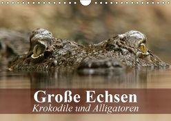 Große Echsen. Krokodile und Alligatoren (Wandkalender 2019 DIN A4 quer) von Stanzer,  Elisabeth