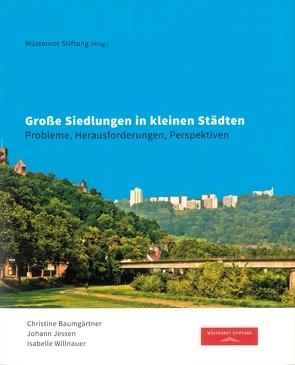 Große Siedlungen in kleinen Städten von Baumgärtner,  Christine, Jessen,  Johann, Krämer,  Stefan, Willnauer,  Isabelle