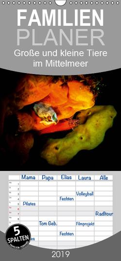 Große und kleine Tiere im Mittelmeer – Familienplaner hoch (Wandkalender 2019 , 21 cm x 45 cm, hoch) von Hampe,  Gabi