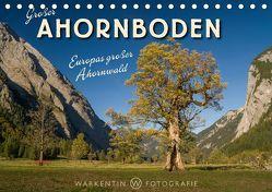 Großer Ahornboden – Europas großer Ahornwald (Tischkalender 2019 DIN A5 quer) von H. Warkentin,  Karl