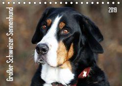 Großer Schweizer Sennenhund (Tischkalender 2019 DIN A5 quer) von SchnelleWelten