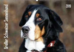 Großer Schweizer Sennenhund (Wandkalender 2019 DIN A2 quer) von SchnelleWelten