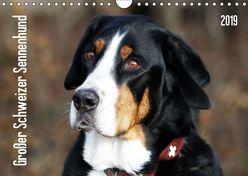 Großer Schweizer Sennenhund (Wandkalender 2019 DIN A4 quer) von SchnelleWelten