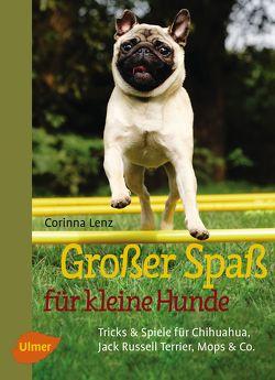 Großer Spaß für kleine Hunde von Lenz,  Corinna