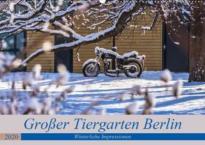 Großer Tiergarten Berlin – Winterliche Impressionen (Wandkalender 2020 DIN A2 quer) von Fotografie,  ReDi
