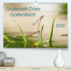 Großstadt-Oase Gartenteich (Premium, hochwertiger DIN A2 Wandkalender 2020, Kunstdruck in Hochglanz) von Wibke Hildebrandt,  Anne