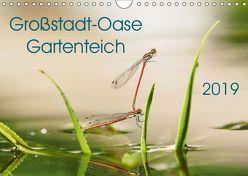 Großstadt-Oase Gartenteich (Wandkalender 2019 DIN A4 quer) von Wibke Hildebrandt,  Anne
