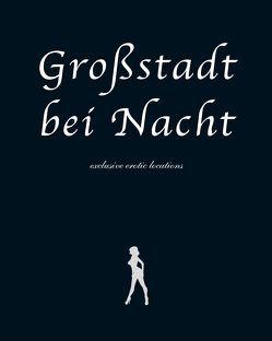 Großstadt bei Nacht – exclusive erotic locations von Beretin,  Michael, Garfield,  Chester