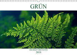 GRÜN . Die Kraft der Natur (Wandkalender 2019 DIN A3 quer) von Michel / CH,  Susan