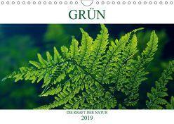 GRÜN . Die Kraft der Natur (Wandkalender 2019 DIN A4 quer) von Michel / CH,  Susan