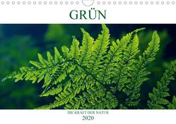 GRÜN . Die Kraft der Natur (Wandkalender 2020 DIN A4 quer) von Michel / CH,  Susan