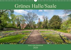Grünes Halle/Saale – Meine wilde Händelstadt (Wandkalender 2020 DIN A3 quer) von Wasilewski,  Martin