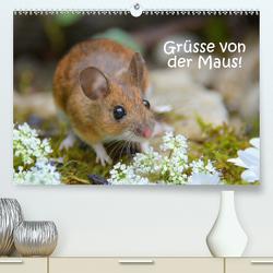 Grüsse von der Maus! (Premium, hochwertiger DIN A2 Wandkalender 2021, Kunstdruck in Hochglanz) von GUGIGEI
