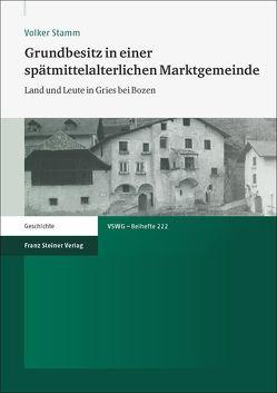 Grundbesitz in einer spätmittelalterlichen Marktgemeinde von Stamm,  Volker