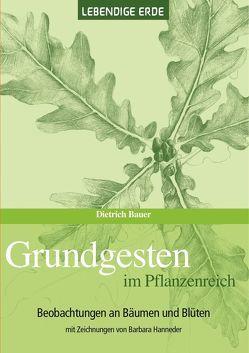 Grundgesten im Pflanzenreich von Bauer,  Dietrich