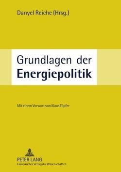 Grundlagen der Energiepolitik von Reiche,  Danyel