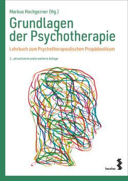 Grundlagen der Psychotherapie von Hochgerner,  Markus