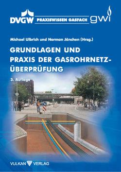 Grundlagen und Praxis der Gasrohrnetzüberprüfung von Jänchen,  Norman, Ulbrich,  Michael