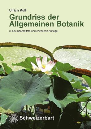 Grundriss der Allgemeinen Botanik von Kull,  Ulrich