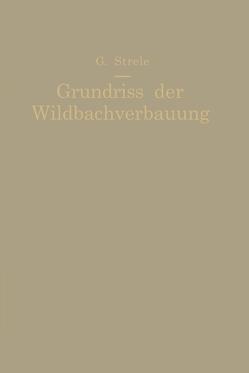 Grundriß der Wildbachverbauung von Strele,  Georg