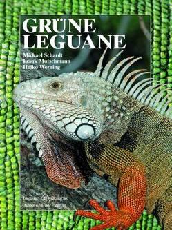 Grüne Leguane von Mutschmann,  Frank, Schardt,  Michael, Werning,  Heiko