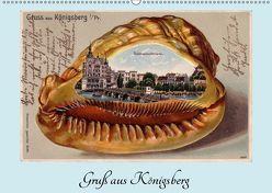 Gruß aus Königsberg – Historische Ansichtskarten (Wandkalender 2019 DIN A2 quer) von von Loewis of Menar,  Henning