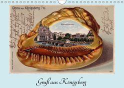 Gruß aus Königsberg – Historische Ansichtskarten (Wandkalender 2019 DIN A4 quer) von von Loewis of Menar,  Henning