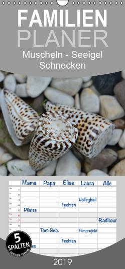 Häuser der Meere: Muscheln – Seeigel – Schnecken – Familienplaner hoch (Wandkalender 2019 , 21 cm x 45 cm, hoch) von Grobelny,  Renate