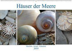 Häuser der Meere: Muscheln – Seeigel – Schnecken (Wandkalender 2019 DIN A2 quer) von Grobelny,  Renate