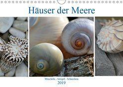 Häuser der Meere: Muscheln – Seeigel – Schnecken (Wandkalender 2019 DIN A4 quer) von Grobelny,  Renate