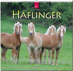 Haflinger von Stuewer,  Sabine