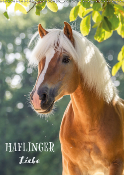 Haflinger Liebe (Wandkalender 2019 DIN A2 hoch) von Pixel Nomad,  The, Zahorka,  Cécile