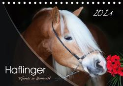Haflinger-Pferde in Reinzucht (Tischkalender 2021 DIN A5 quer) von Natural-Golden.de