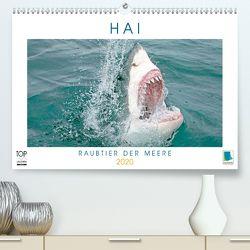 Hai: Raubtier der Meere (Premium, hochwertiger DIN A2 Wandkalender 2020, Kunstdruck in Hochglanz) von CALVENDO