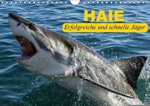 Haie. Erfolgreiche und schnelle Jäger (Wandkalender 2018 DIN A4 quer) von Stanzer,  Elisabeth