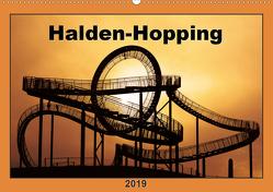 Halden-Hopping (Wandkalender 2019 DIN A2 quer) von Grau,  Anke