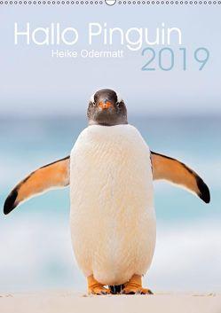 Hallo Pinguin (Wandkalender 2019 DIN A2 hoch) von Odermatt,  Heike