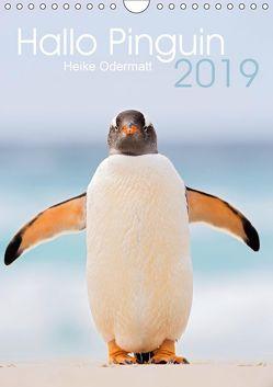 Hallo Pinguin (Wandkalender 2019 DIN A4 hoch) von Odermatt,  Heike