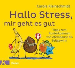 Hallo Stress, mir geht es gut von Kleinschmidt,  Carola, Pannen,  Kai